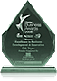 "2008 Winner ""Excellence in Business Development & Innovation"